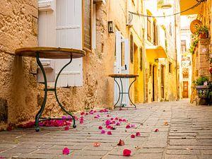 Steegje in Chania, Griekenland van Charlotte Dirkse