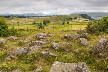 Landschaft im Cantal, Frankreich von Nele Mispelon