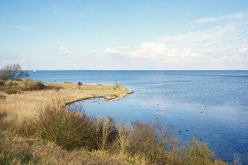 Natuurgebied de Grevelingen von Alice Berkien-van Mil
