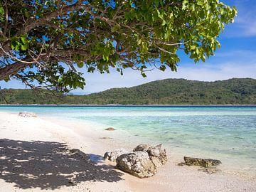 Op een onbewoond eiland in Palawan Filipijnen van Rik Pijnenburg