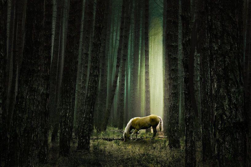 Stille im Wald von annemiek groenhout