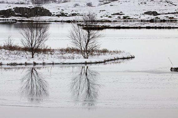 Winters sfeerbeeld van Antwan Janssen