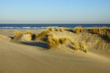 Duinen, strand en zee von Michel van Kooten