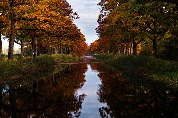 Der Kanal im Herbstton in Apeldoorn von Kelvin Middelink