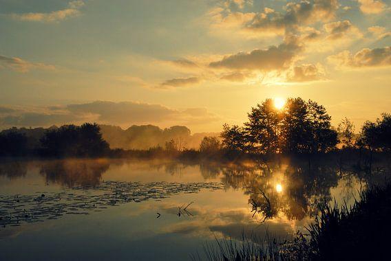 Morning Silence
