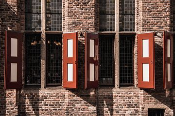 Fensterläden in Doesburg von Dustin Musch