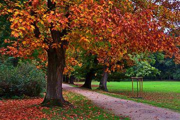 Herfst in het kasteelpark van Edgar Schermaul