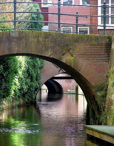 De Grachten van 's-Hertogenbosch von Andrea van Zwol