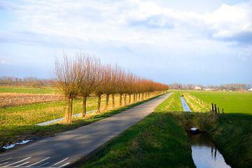 Het platte land  von Janneke Bos
