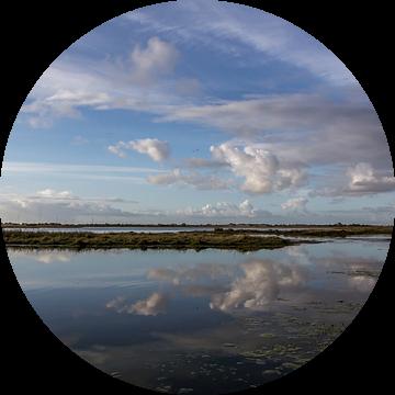 de spiegel van de natuur van Frans Bruijn