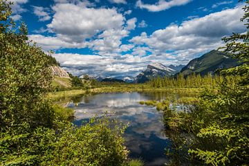 Vermillion lakes van