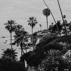 Laguna Beach Californië van Amber den Oudsten