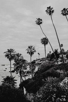 Laguna Beach Kalifornien von Amber den Oudsten