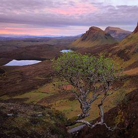 Quiraing bergen in een Skye landschap bij zonsopkomst van iPics Photography