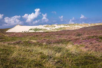 Heidelandschap en verschuivende zandduinen Listland, Sylt van Christian Müringer