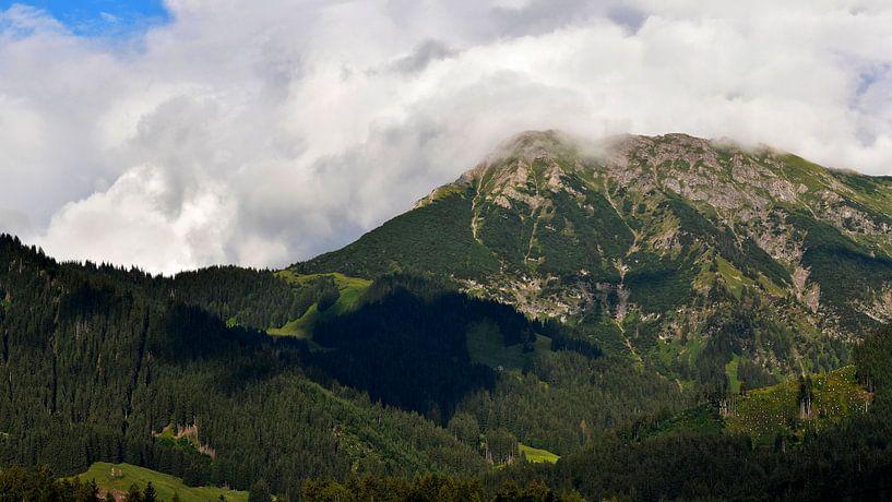 Panorama uitzicht op de Duitse Alpen berg Nebelhorn in Beieren vanuit een dorp in de Allgau. van Cor Brugman
