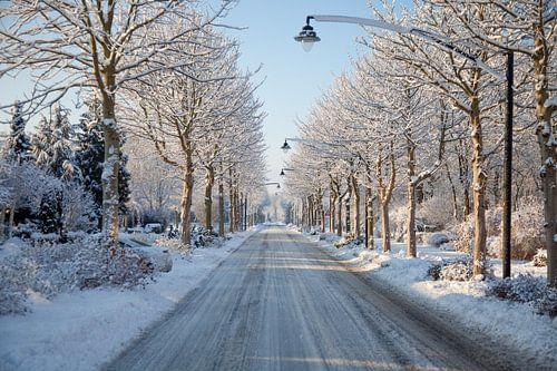 Op een mooie winterdag in Heerhugowaard van