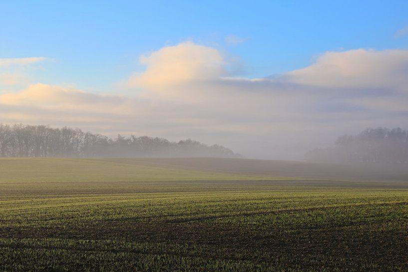 Mist en wolken van Bernhard Kaiser