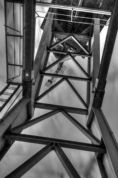 Kranichdock Nord von Peter Deschepper