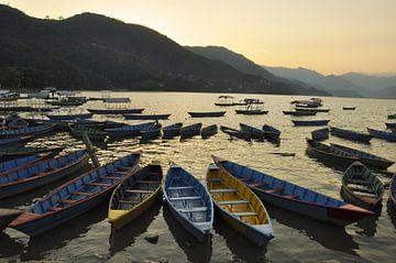 Boote und goldenes WasserNepal, Pokhara: Der Phewa-See und die umliegenden Vorgebirge, eine Landscha von Michael Semenov