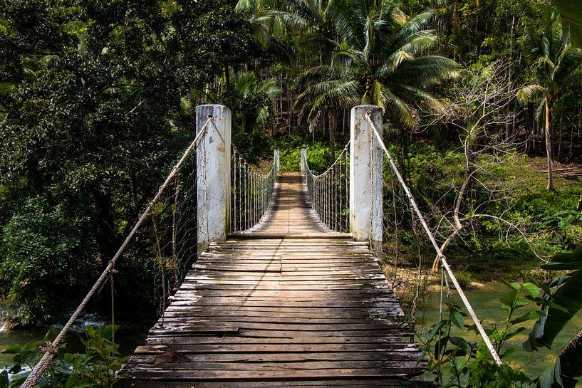 Brug in het binnenland van de Filipijnen van Dick Hooijschuur