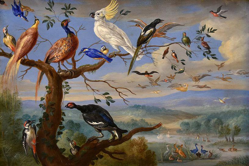 Exotische Vögel Brafa, Jan van Kessel von Meesterlijcke Meesters