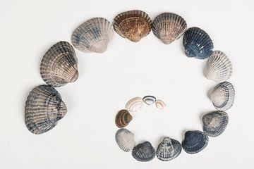 Fibonacci van Geert-Jan Timmermans
