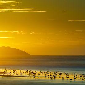 Opale coalst sunset von Nando Harmsen
