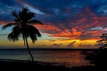Bonaire Sunset Beach van
