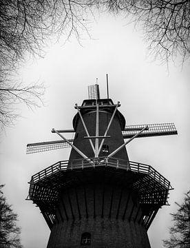 Hollandsche molen van Pascal Raymond Dorland