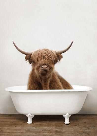 Lustiger schottischer Highlander