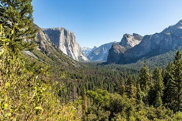 Zonnige Yosemite National park van Martijn Bravenboer