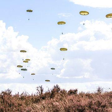 Airborne dropping Ede van Tess Smethurst-Oostvogel