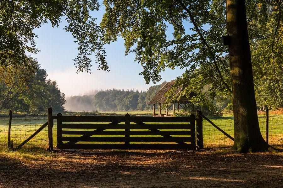 Sunny September View van William Mevissen