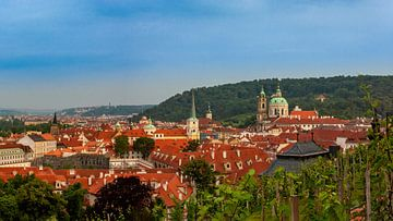 Weinberg des Heiligen Wenzels in Prag von Easycopters