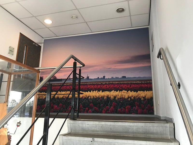 Klantfoto: Tulpen bij zonsopkomst van John Leeninga, op print op doek