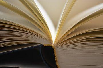 Buch von Ingrid Bargeman