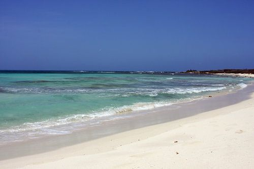 malmok beach  van gea strucks