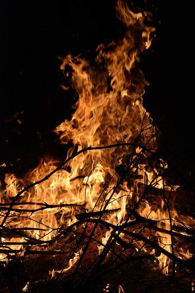 Vuur in de nacht van Ivon Hamers