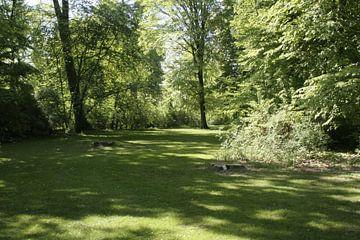 Spaziergang im Park von Katja Bohn