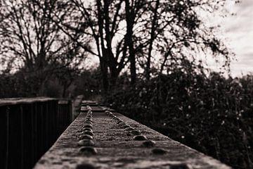 Brückengeländer von Joel Layaa-Laulhé