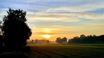 zonsopgang von Meta van Saus