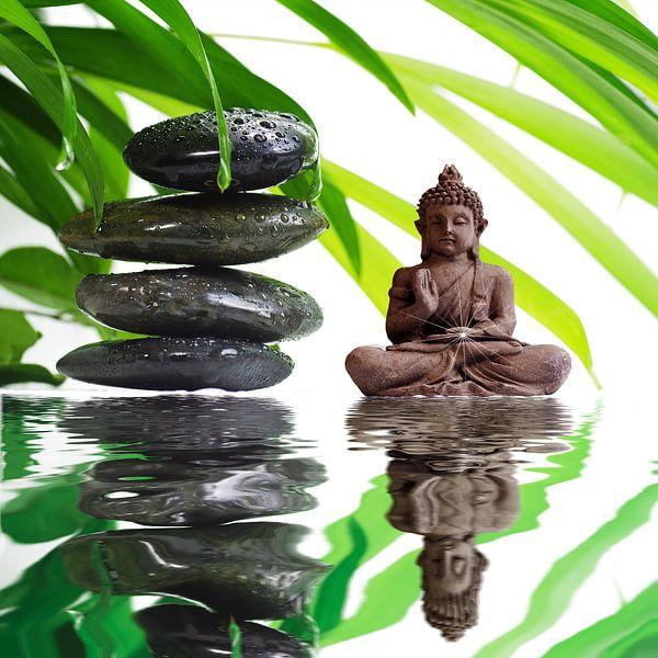 Boeddha Art van Tanja Riedel