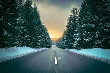 Winterroad von Manuél Mendoza