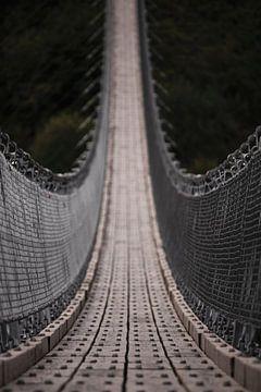 Hängebrücke Geierlay von Sharon de Groot