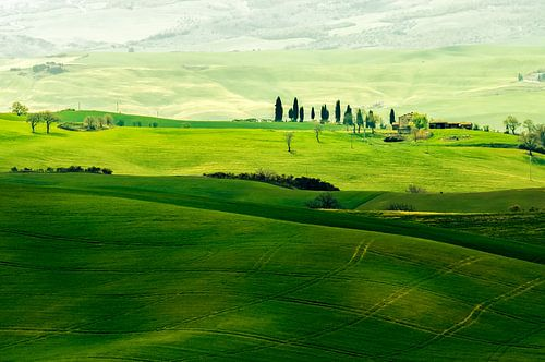 Landschap in Toscane