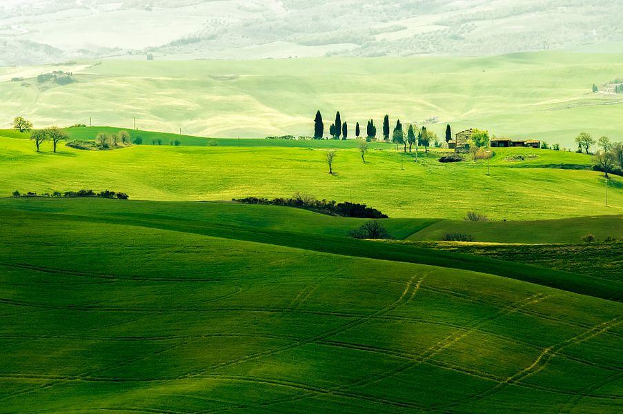 Landschap in Toscane van Rob IJsselstein