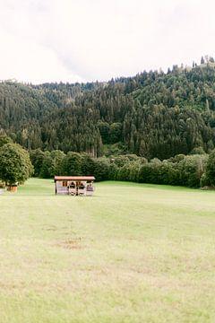 Natuurhuisje in Wildschönau, Oostenrijk van Vildan Ersert