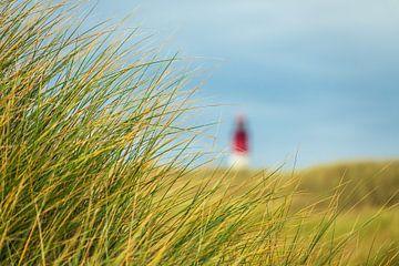 Leuchtturm in Wittdün auf der Insel Amrum von Rico Ködder