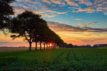 zonsondergang in de Hollandse polder van eric van der eijk